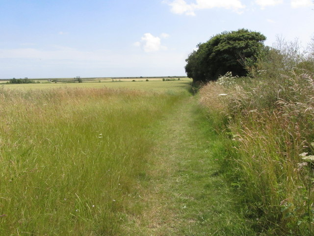 On the Essex Way - Path leading down to the coast from Little Oakley near Harwich