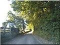 SP9805 : White Hill, Whelpley Hill by David Howard