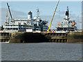 SJ3388 : Cammell Laird dry docks,Birkenhead by Chris Allen