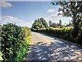 SJ4468 : Station Lane, Guilden Sutton by David Dixon