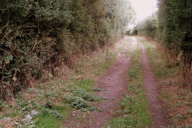 Ivanhoe Way and National Forest Way towards Ashby