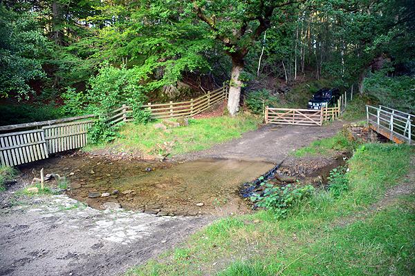 Ford at Cowhouse Bank Wood