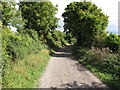 SP7701 : Icknield Way above Bledlow by David Hawgood