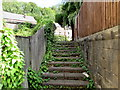 SO8602 : Overgrown steps up to London Road, Brimscombe by Jaggery