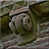 SO4430 : Kilpeck: The church of St. Mary and St. David: Ram corbel by Michael Garlick