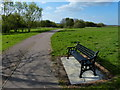 SK6207 : Seat and bench in Hamilton Park by Mat Fascione