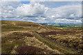 SD7249 : The path on Easington Fell by Ian Greig