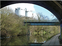 TQ2182 : Railway bridge over canal by Robin Webster