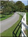 TA2432 : Danthorpe Hall driveway by Paul Harrop
