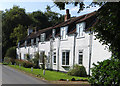 TA2432 : Danthorpe cottages by Paul Harrop