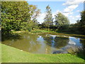 TQ4906 : Pond at Charleston by Paul Gillett