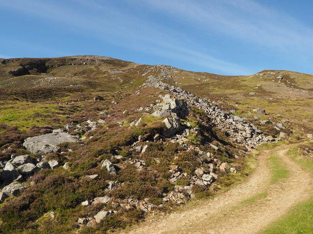 Post-glacial debris flow (looking uphill)