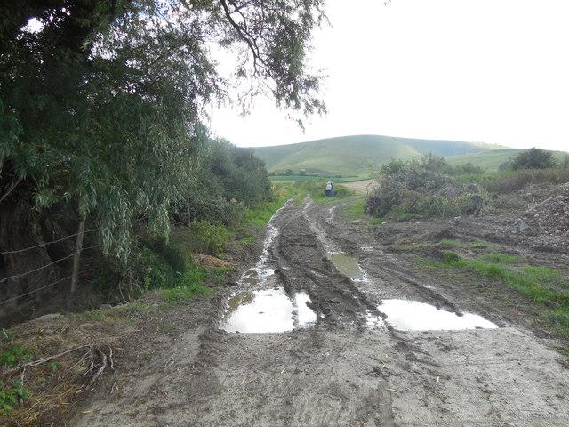 Muddy path from Charleston