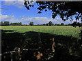 SJ7455 : On the S Cheshire Way, E of Clapgates Farm near Haslington by Colin Park