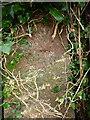SD0699 : OS benchmark - gatepost near Greenside Farm by Richard Law