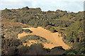 SS8677 : Merthyr Mawr sand dunes by Alan Hughes