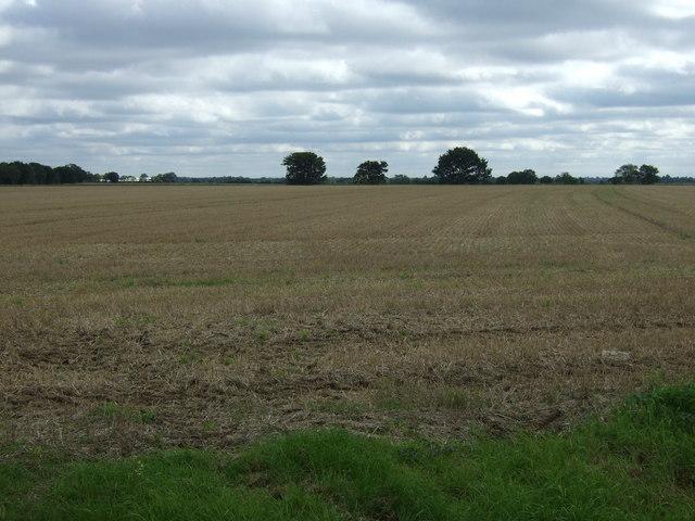 Stubble field near Boyland New Farm