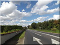 TM1167 : A140 Ipswich Road,Thwaite by Adrian Cable
