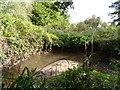 SP0178 : Bend in the River Rea between Longbridge and Northfield by Jeff Gogarty