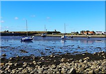 NU1341 : Low tide at The Ouse, Holy Island by Gordon Brown