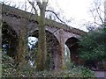 SK4318 : The unused railway bridge, near Grace Dieu Priory by Oliver Mills