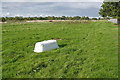 TQ0868 : Rough pasture, Upper Halliford by Alan Hunt