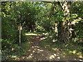 TL0400 : Bridle path near Sarratt by Malc McDonald