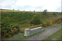 SK2775 : Companion Stone on Big Moor by Graham Hogg