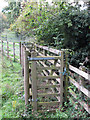 SU7599 : Cattle handling chute, Oakley Hill Nature Reserve by David Hawgood