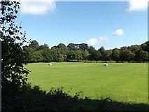 TQ5794 : Brook Weald Cricket Ground, South Weald by Geographer