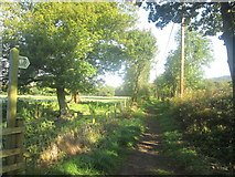 SD6312 : Bridleway towards Lever Park by John Slater