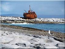 L9901 : Wreck of the Plassy by Gordon Hatton