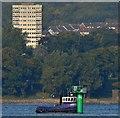 """J3779 : Workboat """"Victoria"""", Belfast Lough (September 2015) by Albert Bridge"""
