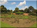 SE2634 : Rose garden in Gotts Park by Stephen Craven