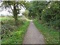 SK6656 : NCN645 The Southwell Trail by Steve  Fareham