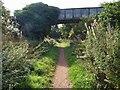 SK6458 : Steel plate girder bridge over the Southwell Trail by Steve  Fareham