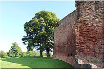 NS6859 : Bothwell Castle by Billy McCrorie
