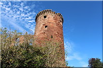 NS6859 : The SE Tower, Bothwell Castle by Billy McCrorie