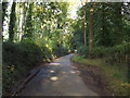 TL1004 : Sergehill Lane, near Bedmond by Malc McDonald