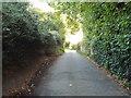 TL1004 : Sergehill Lane, Sergehill, near St Albans by Malc McDonald