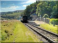 SD7920 : East Lancashire Railway, Irwell Vale Halt by David Dixon