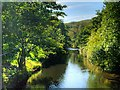 SD7920 : Irwell Vale, River Irwell by David Dixon