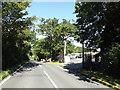 TQ5792 : Mascalls Lane, Brook Street by Geographer