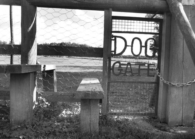 Dog Gate, Hardwick