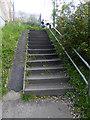 NZ3362 : Wheeling ramp near Fellgate Metro Station by Oliver Dixon