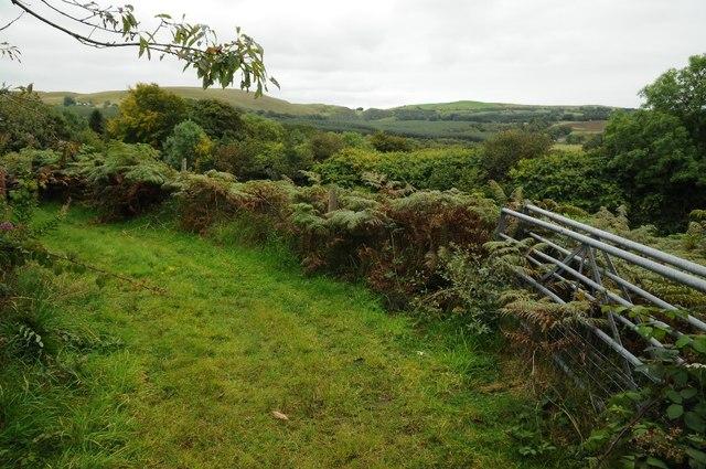 Upland near Sychnant