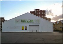 SJ9398 : Tile Giant by Gerald England