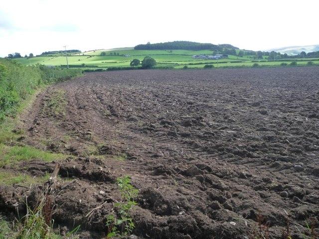 Bare field south of Barton church [1]