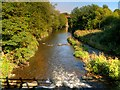 SD7912 : River Irwell, Burrs Country Park by David Dixon