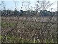 TL4074 : Farmland near Hermitage Farm, Earith by Richard Humphrey